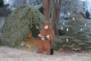 Karhu odotti pihalla havumajaanpieniä ystäviä nallevauvoja nukuttamaan.